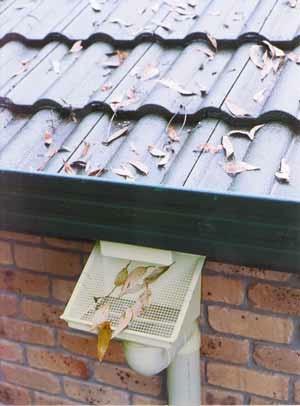 leaf-eater-with-gutter.jpg